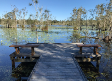 Cattai Wetlands Interpretive Signage